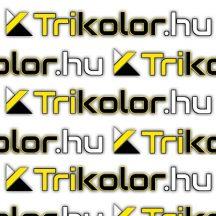 Electrolux E3CGB002 páraelszívó zsírszűrő